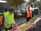 Graz Marathon 2010