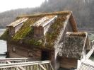 Schneegloeckerllauf 2010